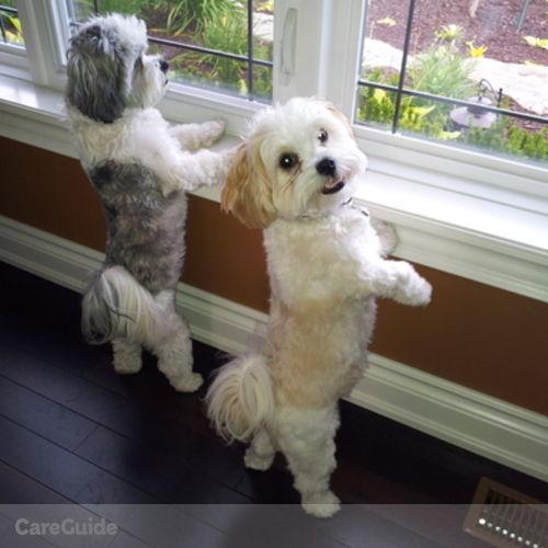 Pet Care Provider Debbie D's Profile Picture