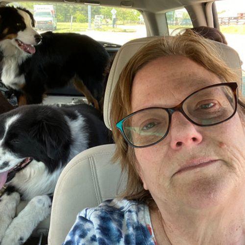 Pet Care Provider JUDITH H's Profile Picture