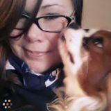 Dog Walker, Pet Sitter in Marlborough