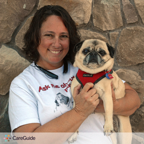 Pet Care Provider Renee Clarke's Profile Picture