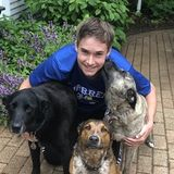 My name is Derek and I live in Gurnee, IL. I love dogs! I have three dogs at home. I will walk and/or sit your dogs.