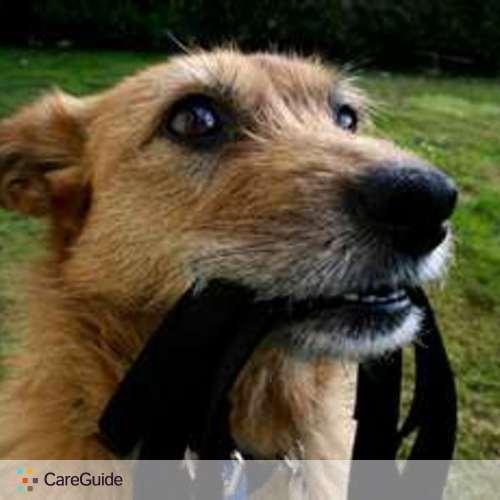 Pet Care Provider Shirley C's Profile Picture
