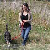 Dog Walker, Pet Sitter in Sarnia