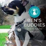 Ben's Buddies Dog Walking Services