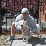 Dog Walker Job, Pet Sitter Job in Palm Desert
