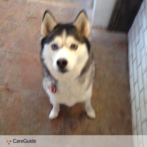 Pet Care Provider Cherish Callahan's Profile Picture