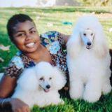 Dog Trainer/Pet Sitter