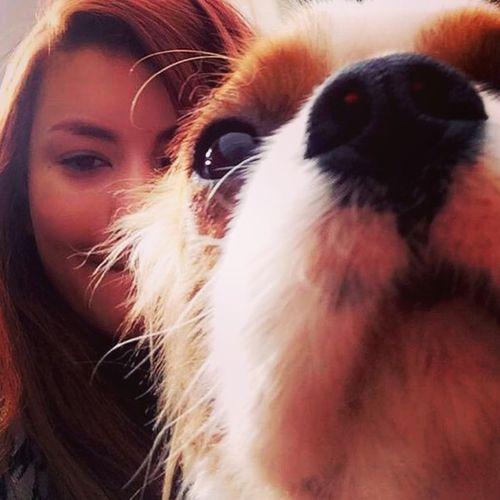 Pet Care Provider Caroline Holanda Gallery Image 2