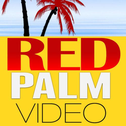 Videographer Provider RedPalm V's Profile Picture