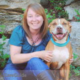 Experienced Pet Sitter for Day & Overnight Pet Care + Dog Walking