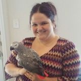 Available: Talented Animal Caregiver in Alvin. Specializes in Exotics.