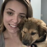 Burlington Pet Sitter Available For Being Hired