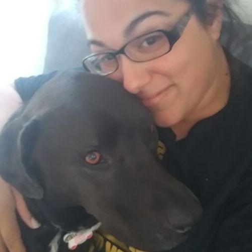 Pet Care Provider Barbara H's Profile Picture
