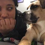 Dog Walker & Petsitter Carrboro