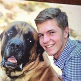 Available: Careful Dog Walker in Ossining, New York