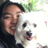 Pet Lover/ Pet Sitter