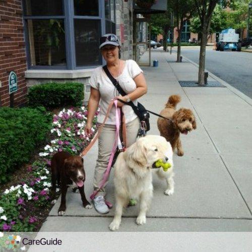 Pet Care Provider Terry F's Profile Picture