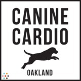 Dog Walker, Pet Sitter in Oakland