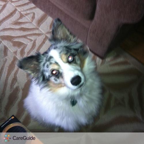 Pet Care Provider Kim Churchill's Profile Picture