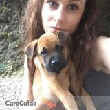Dog Walker, Pet Sitter in Guelph