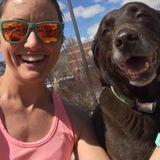 Professional Pet Sitter & Dog Walker