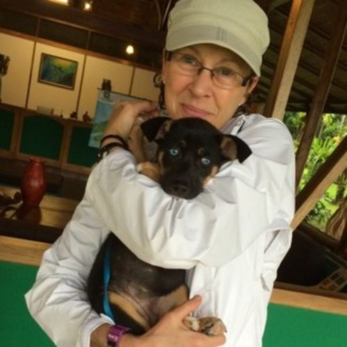 Pet Care Provider Susan P's Profile Picture
