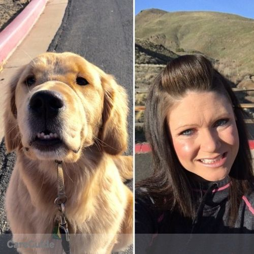 Pet Care Provider Amber James's Profile Picture
