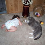 I love Cats...I have had 2 most recent was Socks he lived to be 17yrs , he passed in Oct 2017