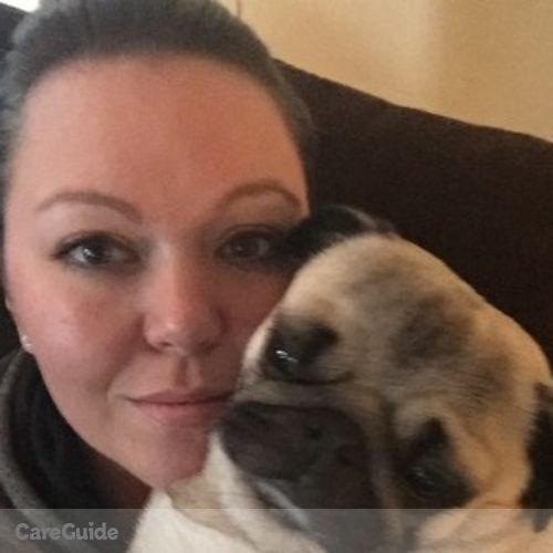 Pet Care Provider Lindsay Hipsley's Profile Picture