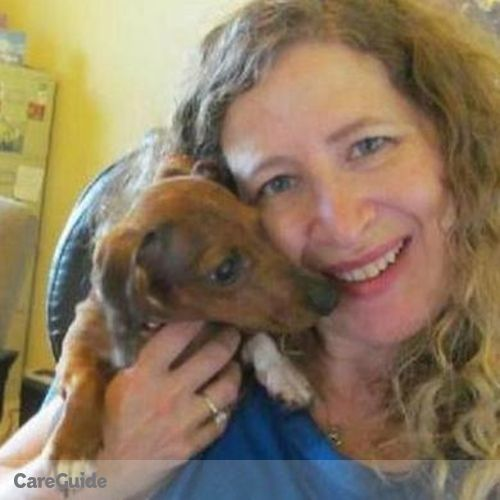 Pet Care Provider Gwenn Cohen's Profile Picture