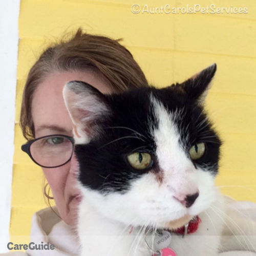 House Sitter Provider Carol Weymouth's Profile Picture