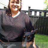 Carey's Dog walk and Play Dog Training
