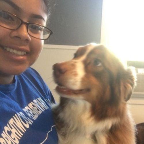 Pet Care Provider Jessika Castillo Gallery Image 2