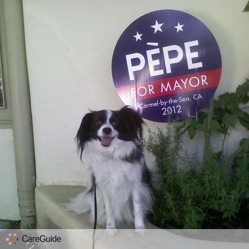 Pet Care Provider Sharon Pretty's Profile Picture