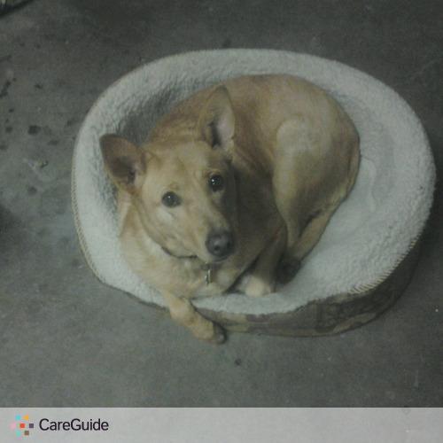 Pet Care Provider Beca M's Profile Picture