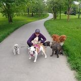 Hi! My name is Priscila, I work as a dog walker and dog sitting.
