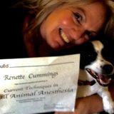 Seeking Modesto Pet Care Provider Jobs