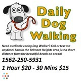 Dog Walker in Long Beach