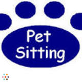 Dog Walker, Pet Sitter in Abingdon