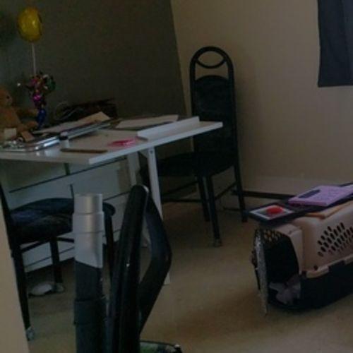 Careful Housekeeping Service Provider Wanted Immediately
