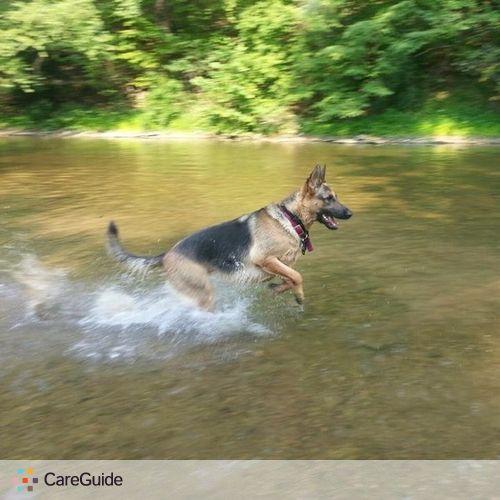 Pet Care Provider Jessica Rissmiller's Profile Picture