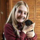 Flexible, Personalized Pet Care