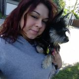 Available: Skilled Dog Trainer in Galveston, Texas