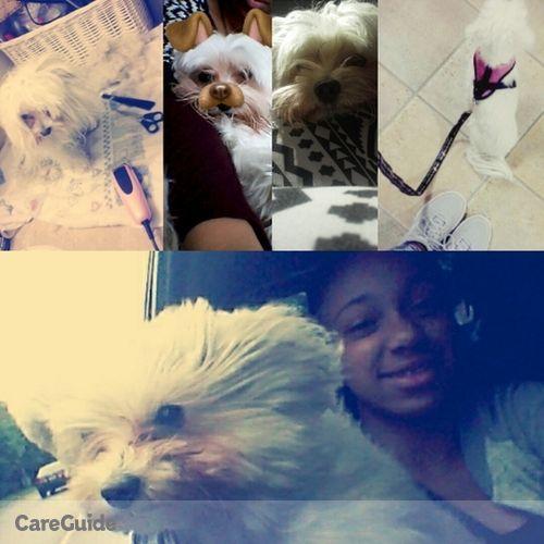 Pet Care Provider Laylah Morin's Profile Picture