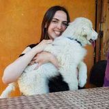 Pet Care Provider in Rancho Santa Margarita, California