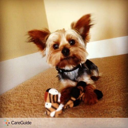 Pet Care Provider Chelsie McCarthy's Profile Picture