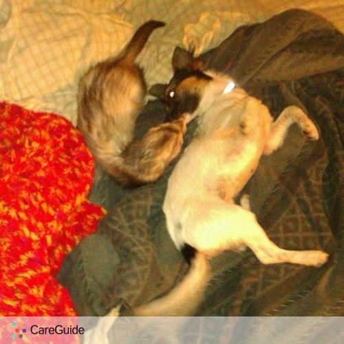 Pet Care Provider Navi Santana's Profile Picture