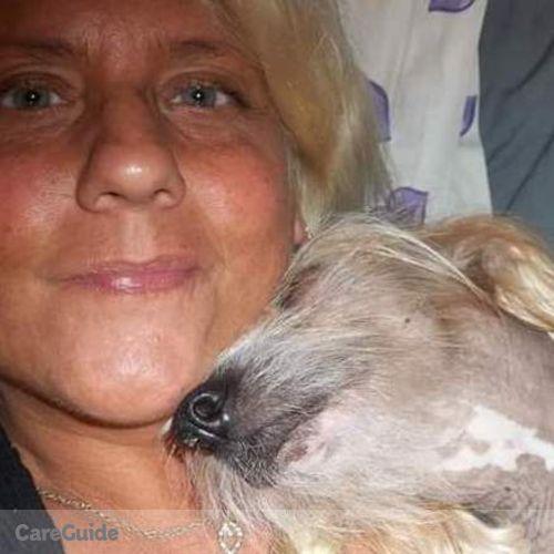 Pet Care Provider Annette Vaccaro's Profile Picture
