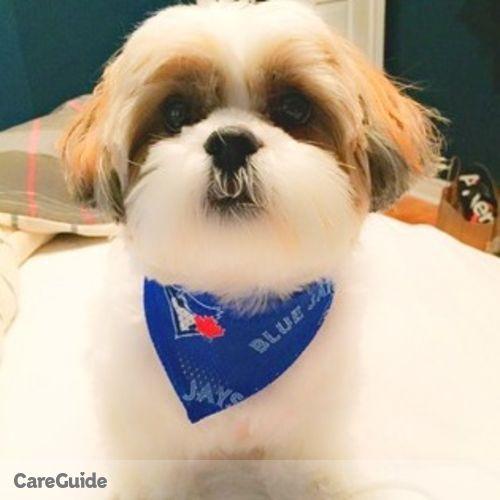 Pet Care Provider Ally Mena's Profile Picture