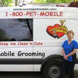 Hiring a Trustworthy Pet Groomer